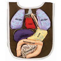 Organ Önlüğü